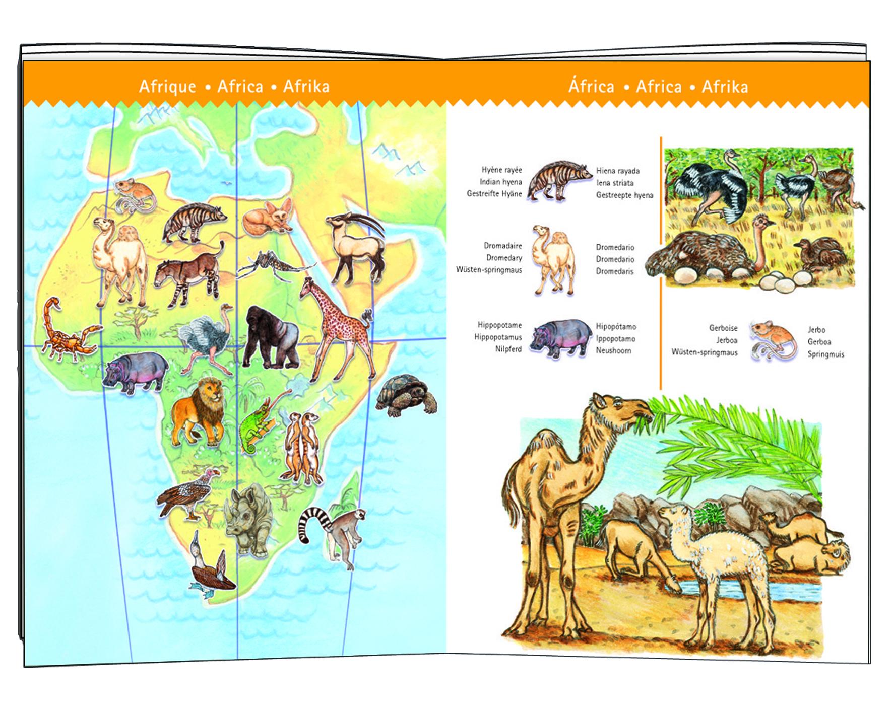 "Djeco 7420 Puzzle Entdecker ""Planet mit Tieren"" 100 Teile"